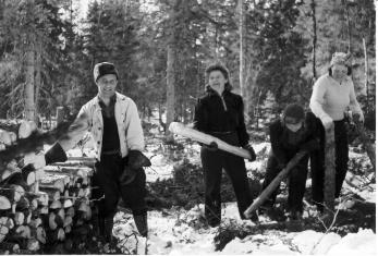 Mustavalkoisessa kuvassa mies ja kolme naista polttopuita tekemässä talvisessa metsässä